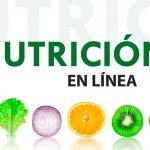 licenciatura nutricion online