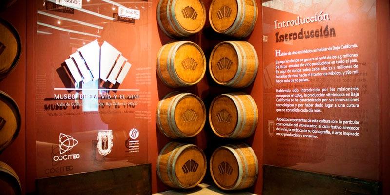 museos sobre vino